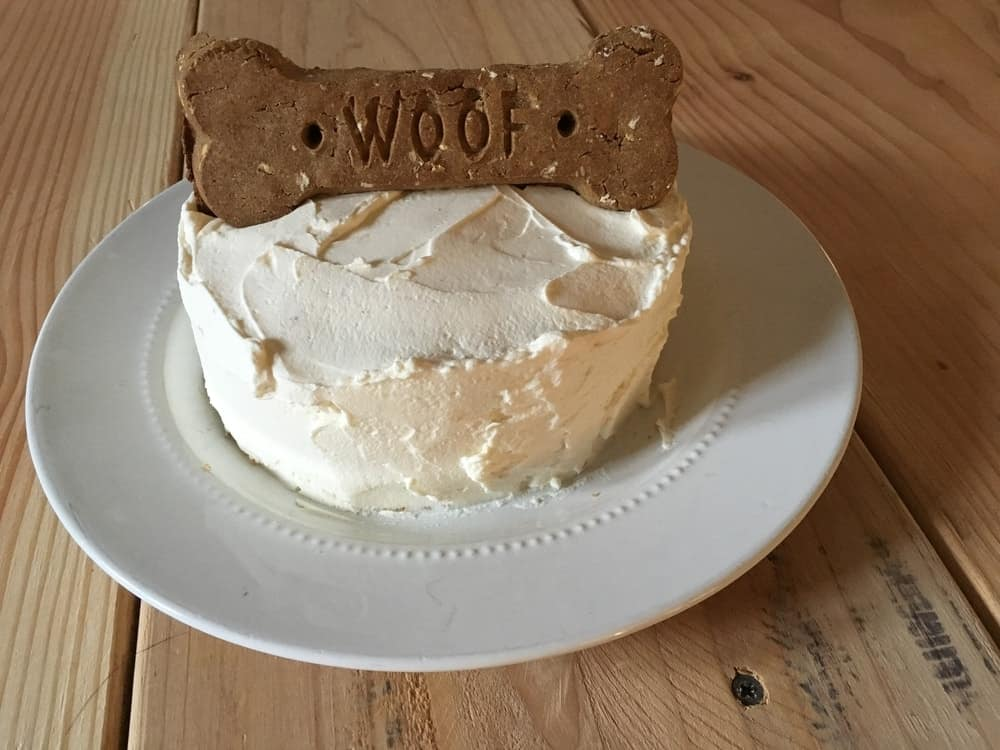 dog cake recipes